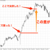 FXってどうやって利益を得るの?金利(スワップポイント)と為替差益(キャピタルゲイン)